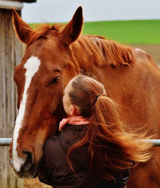 horse-girl