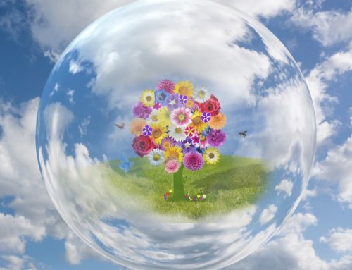 How to Create a Positive Ripple Effect for the Earth With Your Business